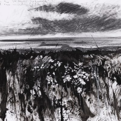 Through the St Agnes hogweed to Annet one windy dusk. 2014.   pencil and ink on paper.  50 x 65cm.