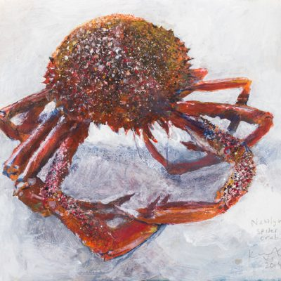 Newlyn spider crab.  2014.    mixed media on museum board.  23 x 24cm.