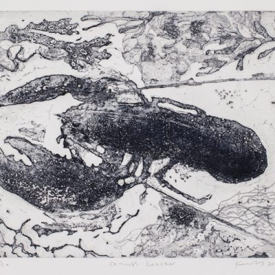 Cornish lobster.  2018.    etching plate.  size 25 x 30cm.  edition of 30.