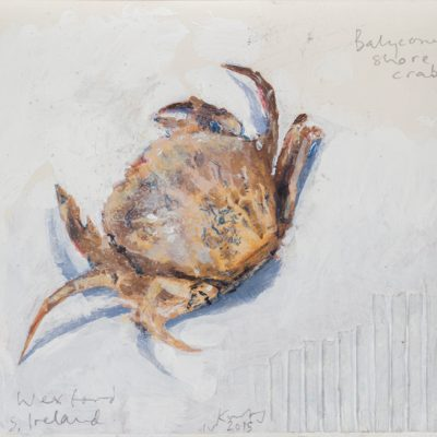 Balyconnegar shore crab Ireland.  2015.    mixed media and collage on museum board.  17 x 20cm.