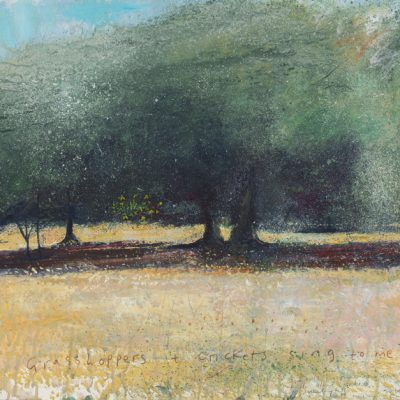 The odd fig tree amongst the French olive trees. Hot sunlight...2015.   mixed media on museum board.  58 x 61cm.