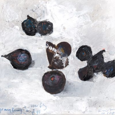 Grayling butterfly and figs. 2015.   mixed media on museum board.  20.5 x 21.5cm.