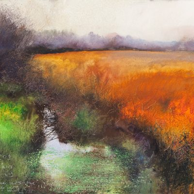 Fog and rain and bog...September 2015.     mixed media on paper.    57x 61cm.